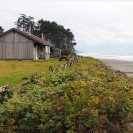 Kalaloch Lodge Highlights
