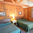 Grant Grove Cabins Highlights