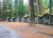 A row of the many cabin accommodations at Curry Village on the Valley floor