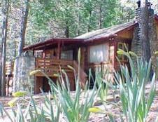 Sequoia, 72