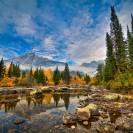 Fall Colors: Grand Teton National Park